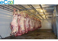 5000 Tons Large Industrial Cold Storage , Beef Processing Cold Storage Room