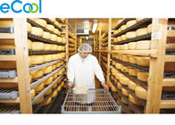 High Temperature Multi function Cold Storage for Cheese Processing and Storing