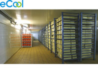 -25℃ ~ -18℃ ELT19 Frozen Food Storage Warehouses 6000Tons Industrial Refrigeration