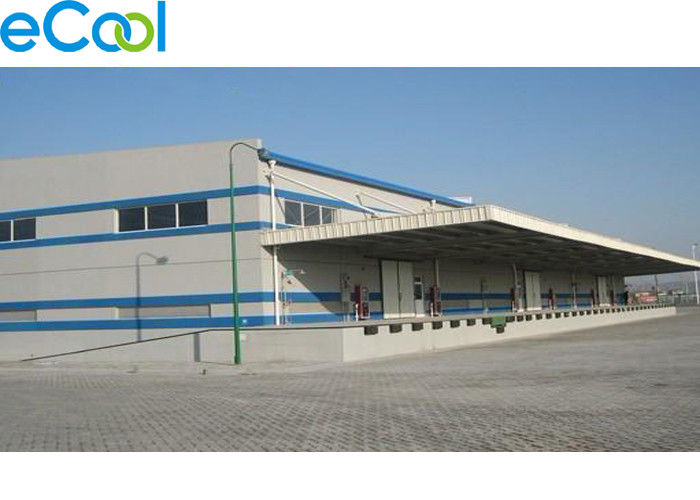 Large Scale Frozen Sea Food Storage Warehouse For Fish Processing Factory Or Port