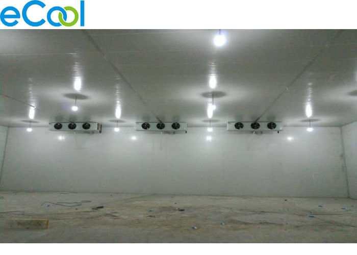2600 Square Meter Frozen Food Refrigerated Storage Rooms EPC4 Low Temperature