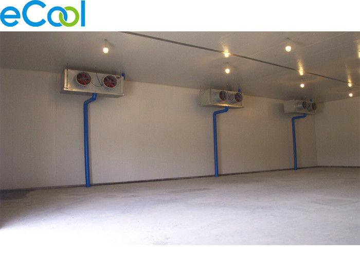 Custom Made Cold Room Warehouse For Already Frozen Foods / Ice Cream