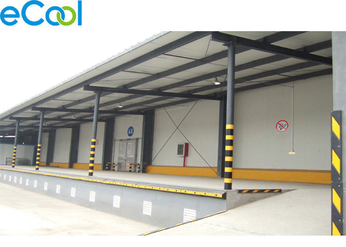 Low Temperature Cold Storage Logistics With Electrical Controlling System