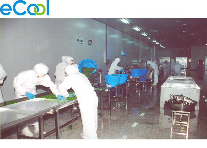 2000 Tons Multipurpose Cold Storage For Preservation Of Different Frozen Vegetables