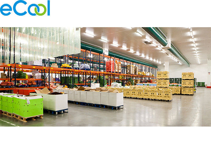 Walk In Food Storage Warehouse , Freon R22 / R404a Cold Storage Area