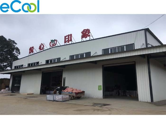 Transfer Center Cold Storage Facilities , Long Life Cold Food Storage