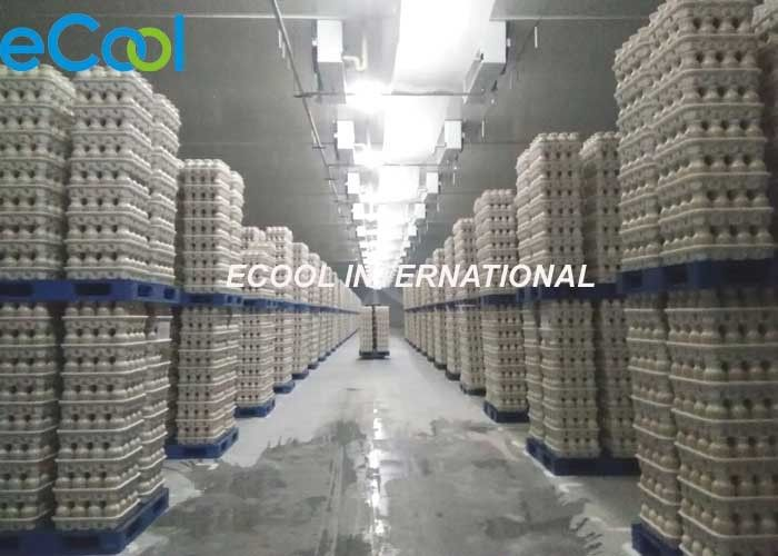 High Efficient Long Term Egg Storage / Anti Fog Walk In Cold Storage Room