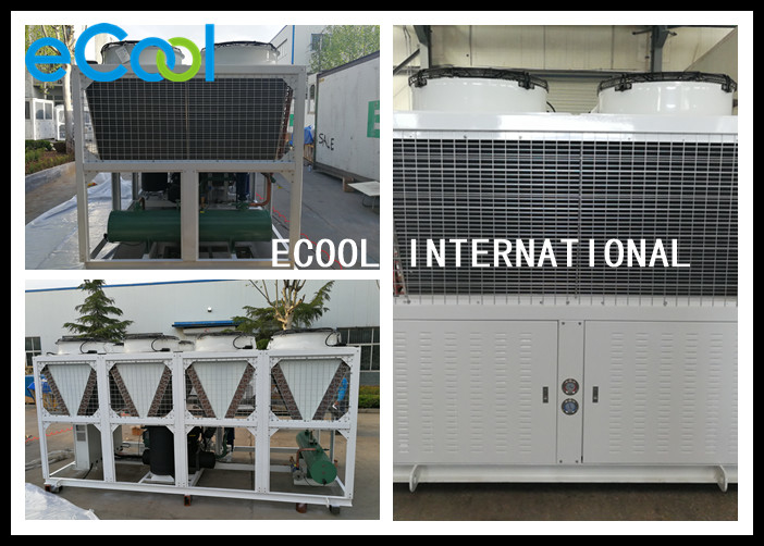 Home R134a Condensing Unit , Stable Low Temperature Condensing Unit