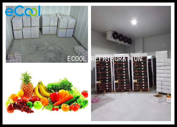 Large Cold Storage Of Fruits And Vegetables With Refrigeration Cold Room Panels