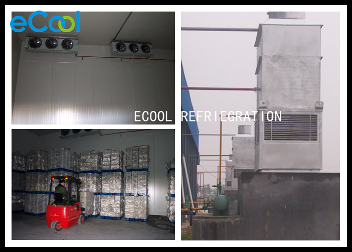 Fruit Cold Storage Warehouse / Vegetable Freezer Storage Room BITZER Compressor